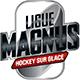 France - Ligue Magnus
